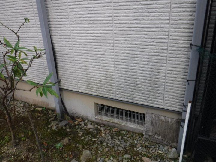 外壁 カビ・苔の発生