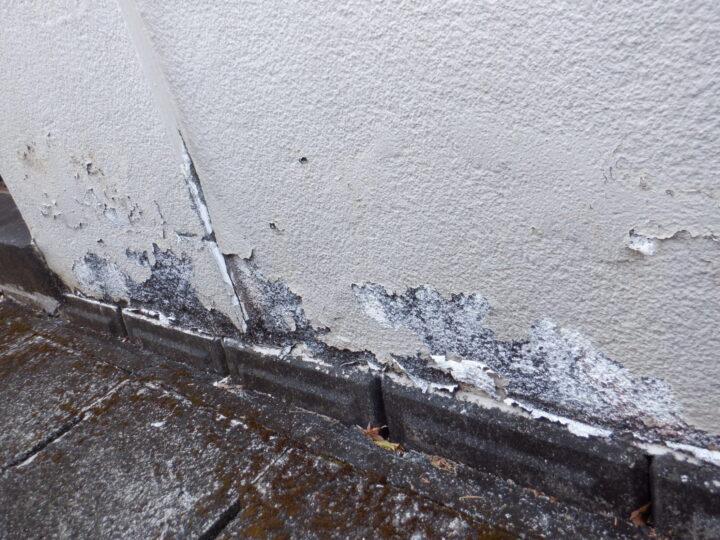 塀 塗膜の剥離