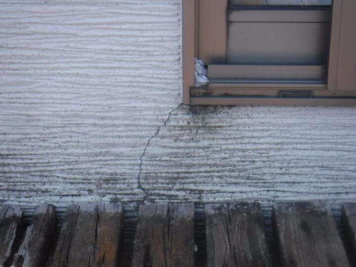 外壁 カビ