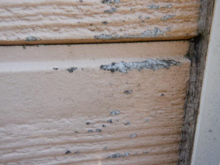 外壁 塗膜剥離